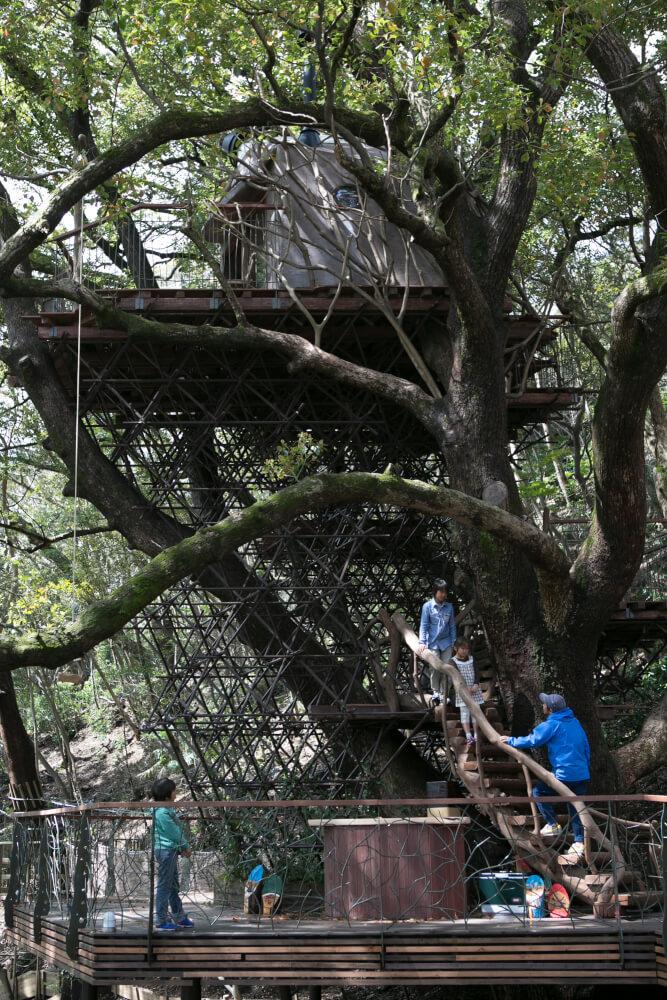 木の上に行こう!「森の空中基地 くすくす」