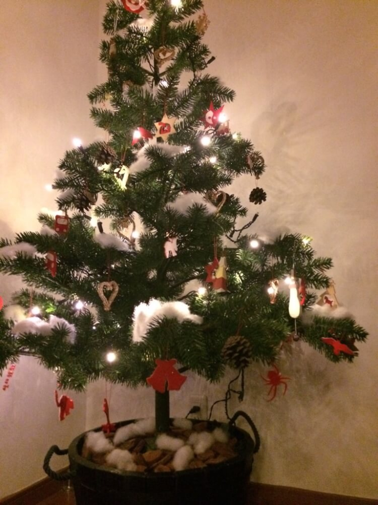 中学生と小学校高学年が飾るクリスマスツリーって