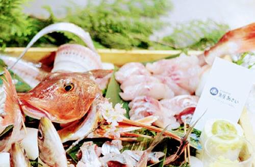 【明日開催です!】闇練(やみれん)!「乾杯して魚さばいての金曜日」