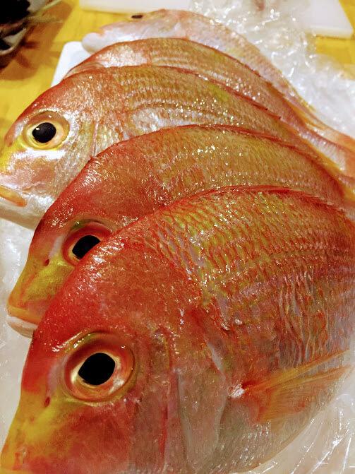 【7/28開催】闇練(やみれん)!「乾杯して魚さばいての金曜日」