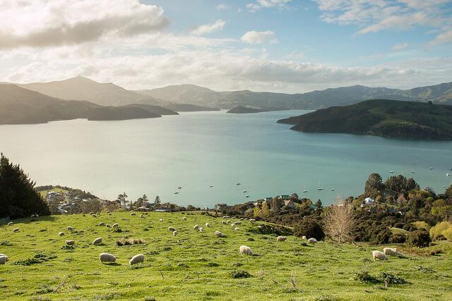 ニュージーランドとボツワナとPTA総会